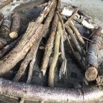 New 'Kindling' workshops 2 & 3 ~ 9th Aug. and 13th Sept. 2020